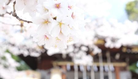 春祭 祈年祭